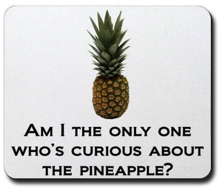 the Pineapple incident of How I met Your Mother