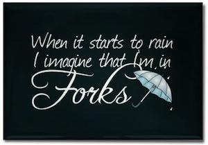 When it starts to rain i imagine that i am in Forks fridge Magnet.