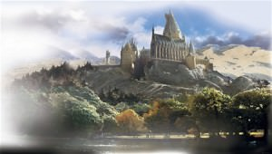 Harry Potter XL Wallpaper Mural 6' x 10.5'