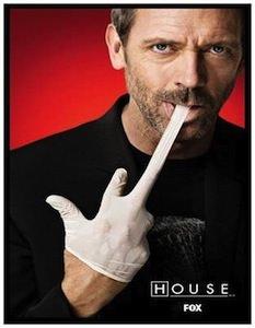 House Giving The Finger Magnet